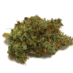buy BC Kush for sale online