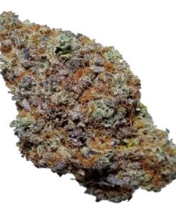 Blackberry Kush for sale online