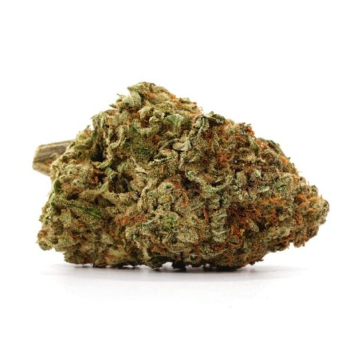 buy Critical Kush for sale online