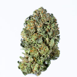 buy Critical Mass kush online