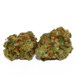 buy GG4/ Gorilla Glue strain