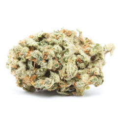 Buy Ghost Train Haze  strain