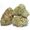 buy Hash Plant for sale online