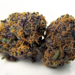 Purple Kush for sale online