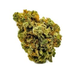 buy Super Lemon Haze strain